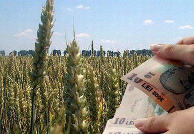AFIR pune la bătaie alte 37 milioane de euro fonduri nerambursabile. Vezi condițiile!