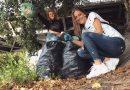 Se cauta voluntari pentru curățenie