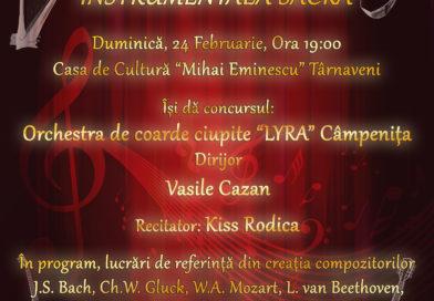 Concert de muzică instrumentală sacră la Târnăveni