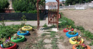 """Activități de educație ecologică la Școala Gimnazială """"Traian"""""""