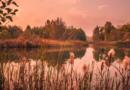 5 motive pentru care trebuie să vizitezi Delta Dunării toamna