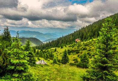 Parcul Național Călimani din județele Mureș, Suceava, Harghita și Bistrița-Năsăud