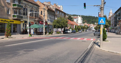 Cine susține economia Târnăveniului. Top 20 firme